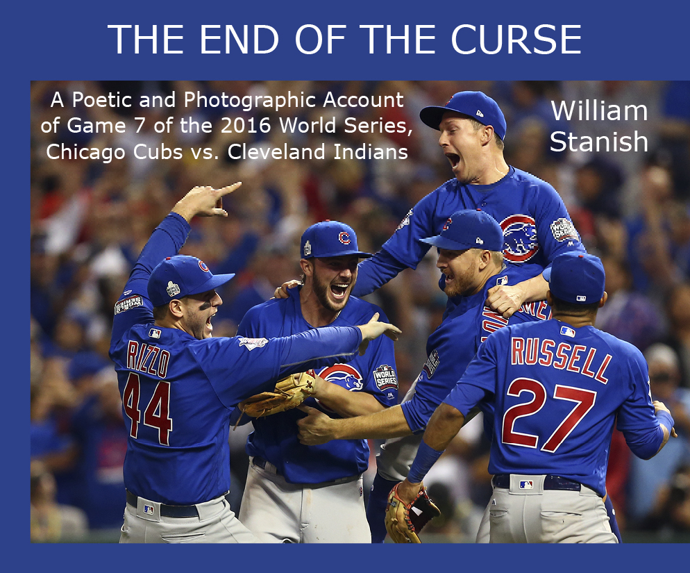 Book cover for The End of the Curse